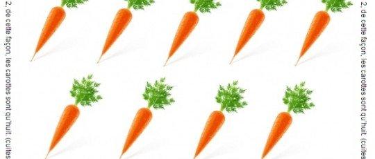 Enigme visuelle carottes cuite